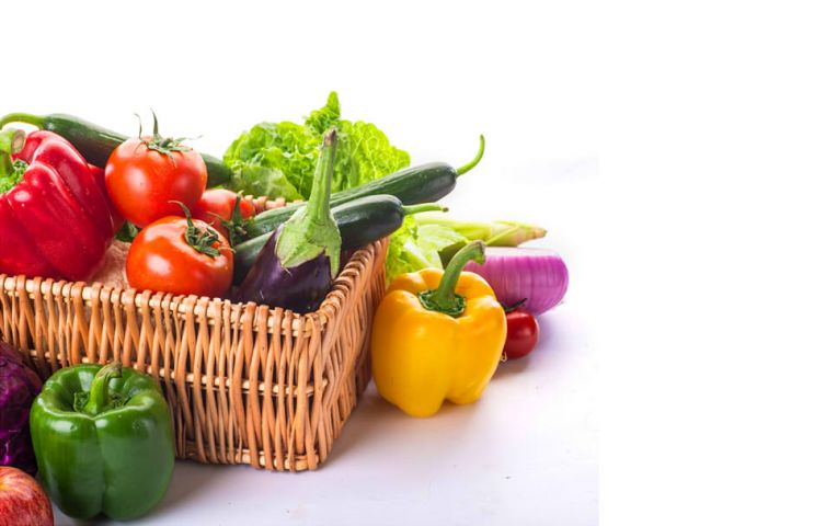 飲食不挑食健康隨身走